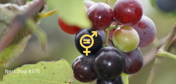 Grape Equality