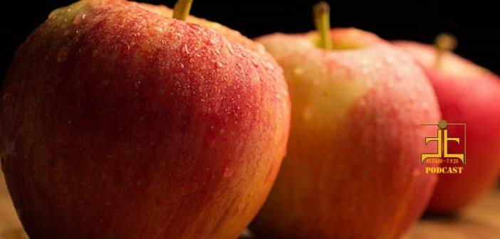 Motherhood & Apple Pie in July
